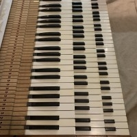 Three manual keyboard stack with ivory keys